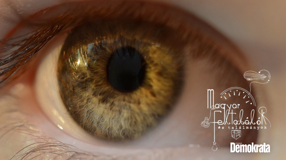 Fotó: pexels.com