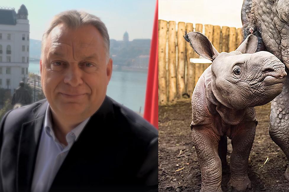 Képernyőfotó: Orbán Viktor, Facebook